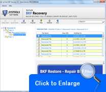 Screenshot of BKF Recovery Tool